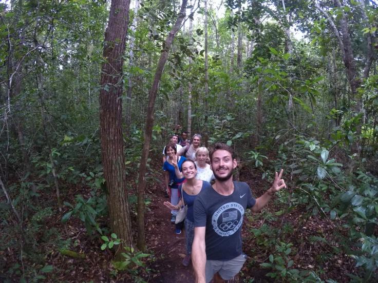 La famille de la jungle