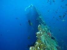 Epave bateau Amed - Indonésie
