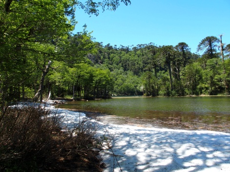 Neige au Parc de El Cani