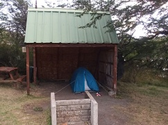 Camping Pehoe - Torres del Paine