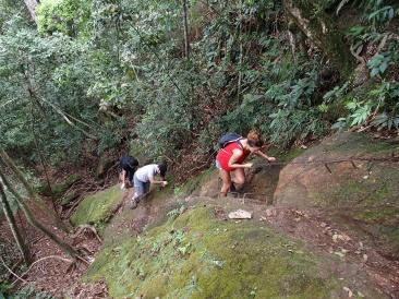 Ascension vers le Corcovado - Rio de Janeiro