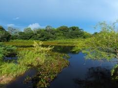 Fazenda - Parc Pantanal