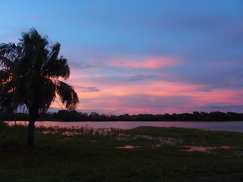 Parc Pantanal au coucher de soleil