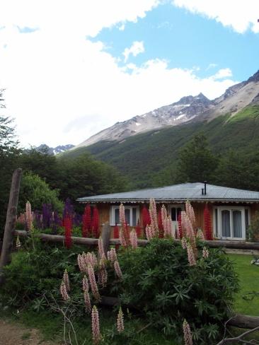 Trek Glacier Los Tempanos - Ushuaia